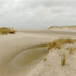 Go wild an der Nordsee - Norderney mit Kind