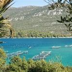 Kroatien: 14 Tipps für deine Reise