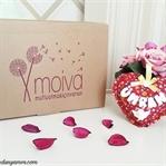 Moiva / Mutlu Olmak İçin Varsın!