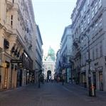 Viyana 5'lisi ve Viyana Yemekleri
