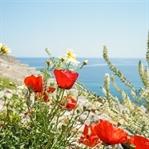 20 Tipps für deine Reise nach Griechenland