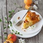 Aprikosen-Kuchen mit Olivenöl