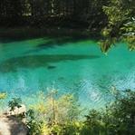 Der grüne See in Österreich - Ein Naturjuwel