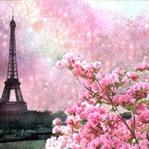Paris: Eyfel'in Gölgesinde 5 Gün