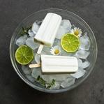 Selbst gemachtes Kokos Limetten Eis (vegan)