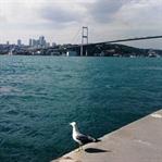 İstanbul'da Doğaya ve Tarihe Yolculuk
