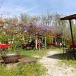 Ungarn im Frühling