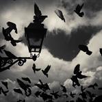 Yalnızlık: Gece #3
