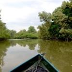 Bootstour durch den Dschungel Hollands