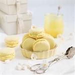 Macarons mit einer Schokoladen Zitronen Ganache