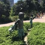 Nezahat Gökyiğit Botanik Bahçesinde Piknik