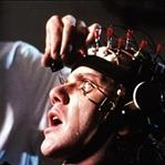 Sonu Korkunç Biten 10 Psikoloji Deneyi