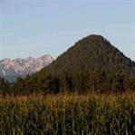 Wanderung auf den Kathreinkogel in Kärnten