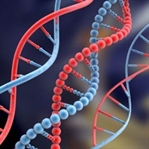 DNA'yı Kim Buldu