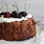 Glutenfreier Olivenölkuchen mit Schokolade