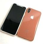 iPhone 8'in Yeni Renk Seçeneği