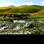 Kırgıız Kültürü'nün 8 Olmazsa Olmazı