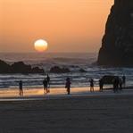 Mehr Meer geht nicht:So schön ist die Oregon Coast