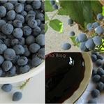 Oregon Üzümü Reçeli (Oregon Grape Jam)