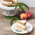 Topfen Pfirsich Torte