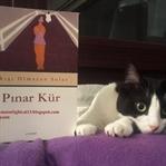 Akışı Olmayan Sular - Pınar Kür