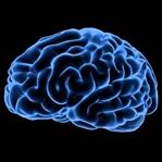 Beyin sağlığı için yapılması gereken 5 şey!