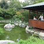 Doğal keşif: Baltalimani Japon Bahçesi
