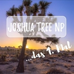 Joshua Tree Nationalpark - zum 1. Mal