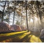 Kaz Dağları Kamp – Kaz Dağları Kamp Alanı