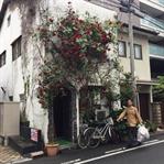 Kendine Hayran Bırakan Japon Evleri