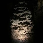 Montenegro - Lipa Cave