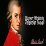 Mozart Etkisinin Moleküler Temeli