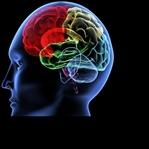 Psikolojiyle Bozulan Bağışıklık Sistemi