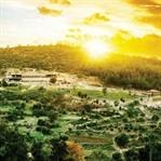 Yaşam Sizi Delirttiyse Kaçış: Deliismail Çiftliği