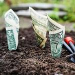Blogunuzdan İlk Paranızı Kazanmaya Hazır Mısınız?