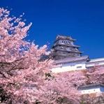 Gıpta Edilen Japon Eğitim Sisteminin Özellikleri