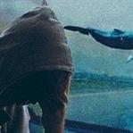 Mavi Balina, önce hipnoz ediyor sonra öldürüyor
