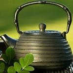 Moringa Çayı: Faydaları ve Nasıl Yapılır?