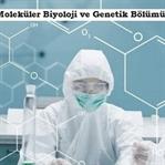 Bir Tercih Meselesi: Moleküler Biyoloji ve Genetik