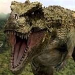 Dinozorların Nesli Tükendiğinde Yaşayan Canlılar