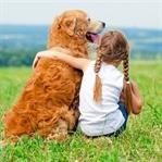Hayvan sevgisi çocuğu geliştiriyor