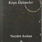Kitap, Koyu Üşümeler, Necdet Arslan