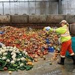 Küresel Gıda Sistemini Değiştirmek