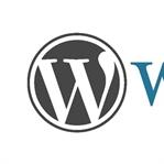 WordPress Menü Ekleme Sorunu Çözüldü