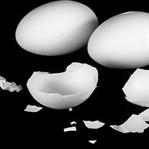 Yumurta Kabuklarını Atmadan Önce Bir Daha Düşünün!