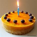 1 Yaş Doğumgünü Pastası (şekersiz-sütsüz)