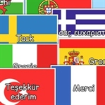 Blogger ve HTML Siteye Bayraklı Çoklu Dil Ekleme