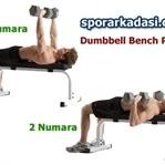 Dumbell Bench Press Hareketi Nasıl Yapılır?
