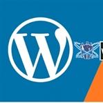 Wordpress mi Blogger mı - Avantaj ve Dezavantajlar