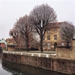 Pastel Asalet Strasbourg